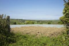 Ackerland in Devon England Stockbild