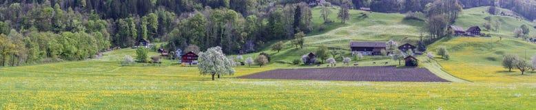 Ackerland - die Schweiz Stockbilder