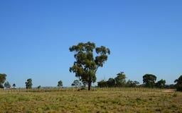 Ackerland in einer Landseite Lizenzfreie Stockbilder
