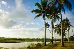 Ackerland entlang dem Flussufer an der Landschaft Stockfotografie