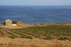Ackerland entlang der Küste Stockfotos