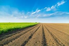 Ackerland am Frühling, landwirtschaftliche Landschaft Stockfotografie