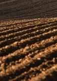 Ackerland, gepflogenes Feld am Frühling, Landschaft, landwirtschaftlich, Felder Stockfoto