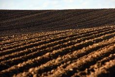 Ackerland, gepflogenes Feld am Frühling, Landschaft, landwirtschaftlich, Felder Stockbilder