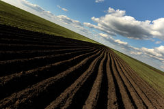 Ackerland, gepflogenes Feld am Frühling, Landschaft, landwirtschaftlich, Felder Lizenzfreies Stockbild