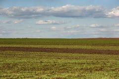 Ackerland, gepflogenes Feld am Frühling, Landschaft, landwirtschaftlich, Felder Lizenzfreie Stockfotos