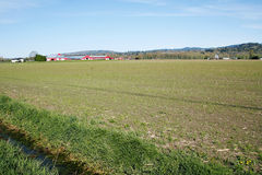 Ackerland im Frühjahr Lizenzfreies Stockfoto