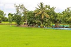 Ackerland im ländlichen Gebiet Stockfotos