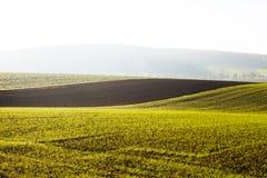 Ackerland im Morgensonnenlicht Stockfotografie