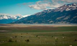 Ackerland im Patagonia Stockbilder