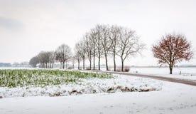 Ackerland im Schnee Stockfotografie