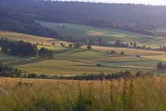Ackerland im Sommer Stockbilder