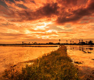 Ackerland im Sonnenuntergang Stockfotografie