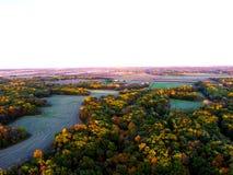 Ackerland im Wald Lizenzfreies Stockfoto