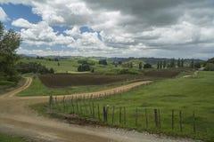 ackerland Irgendwo in Neuseeland Lizenzfreies Stockbild