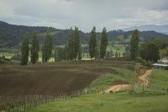 ackerland Irgendwo in Neuseeland Stockfoto