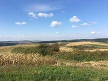 Ackerland-Landschaft Lizenzfreies Stockbild