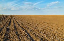 Ackerland, landwirtschaftliche Landschaft gepflogen Lizenzfreies Stockfoto