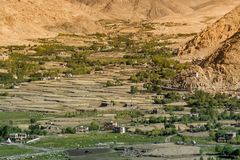 Ackerland - Leh, Ladakh, Indien Lizenzfreie Stockfotografie