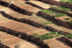 Ackerland in Marokko Lizenzfreies Stockfoto