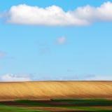 Ackerland mit blauem Himmel Lizenzfreies Stockbild
