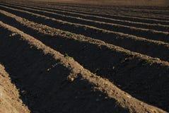 Ackerland mit einer dunklen Erde Lizenzfreies Stockbild
