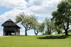 Ackerland mit Feldscheune und -bäumen Stockbild