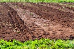 Ackerland mit fruchtbarem Boden in Asturien Lizenzfreie Stockfotografie