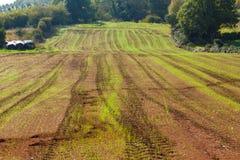 Ackerland mit fruchtbarem Boden in Asturien Stockbild