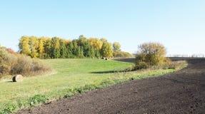 Ackerland mit gepflogenen Feldern im Herbst Lizenzfreies Stockfoto