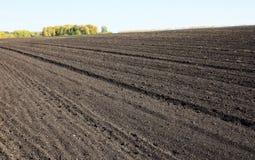 Ackerland mit großem landwirtschaftlichem gepflogenem Feld Stockfotos