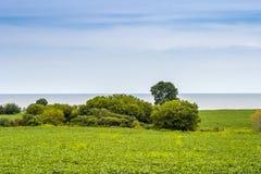 Ackerland mit See im Hintergrund Lizenzfreies Stockbild