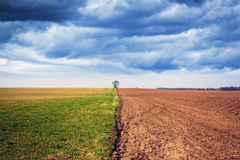 Ackerland mit stürmischem Himmel Stockbild