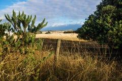 Ackerland mit Stacheldrahtzaun glänzte durch letzte Sonne auf Phillip Island, Victoria, Australien Stockfoto