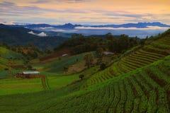 Ackerland in Montag-Stau, Chiang Mai, Thailand Lizenzfreie Stockfotos