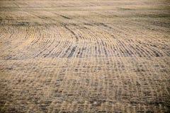 Ackerland nach dem schmelzenden Schnee Lizenzfreie Stockfotos