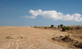 Ackerland nachdem dem Ernten mit blauem Himmel und Wolken Lizenzfreie Stockfotos