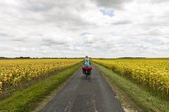 Ackerland nahe Royan mit Radfahrer Lizenzfreie Stockfotografie