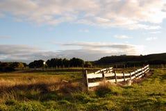 Ackerland nahe Stanley Stockbild