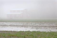 Ackerland-Nebel Lizenzfreies Stockfoto