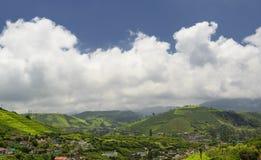 Ackerland in Nilgiris nahe Ooty Lizenzfreie Stockfotos