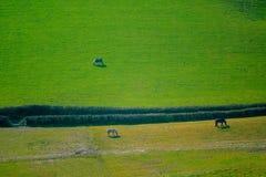 Ackerland in Ost-Devon Stockfoto