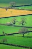 Ackerland in Ost-Devon Stockfotografie