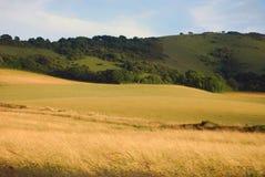 Ackerland in Ostsussex, England Lizenzfreie Stockfotos