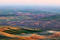Ackerland in Palouse Washington Lizenzfreies Stockfoto