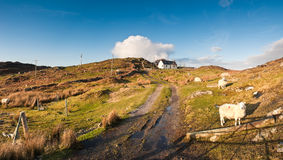 Ackerland, Schottland Lizenzfreies Stockbild