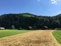 Ackerland in Slowenien Lizenzfreies Stockfoto