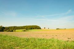 Ackerland am Sommer Stockfoto