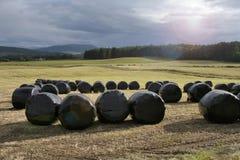 Ackerland am sonnigen Abend (Esprit Stockfotografie