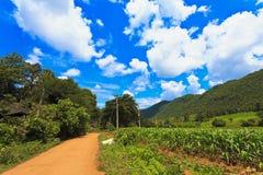Ackerland in Thailand Stockfotos